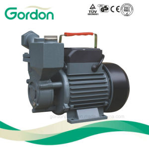 Domestic Electric Copper Wire Self-Priming Booster Pump with Brass Impeller pictures & photos