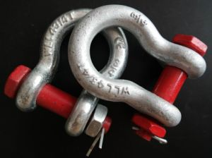 HDG Us Type Forged Safety Bow Shackle pictures & photos