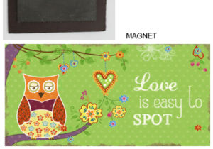Owl Cute Resinous Fridge Magnet for Home Decor pictures & photos