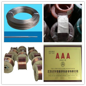 300V High Temperature Silicone Rubber Heating Wire pictures & photos