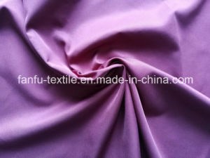320t 2/1 Twill 65D/192f Polyester Pongee