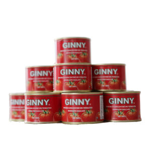 Ginny Tomato Ingredient Product pictures & photos