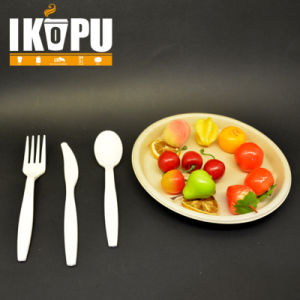Manufacture Plastic Handle Cutlery Set pictures & photos