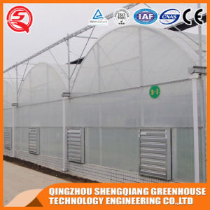 Agriculture Hydroponics Vegetable/ Garden Plastic Film Greenhouse pictures & photos