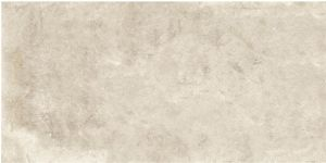 Building Material Porcelain Tiles Floor Tile 600*1200mm Anti-Slip Rustic Tile (LNC6012116M)