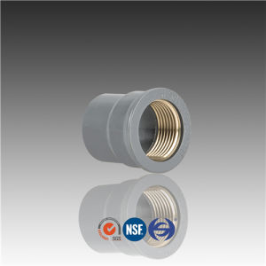 De20*1/2 De25*1/2 De25*3/4 Pn10 PVC Copper Threaded Reducer pictures & photos