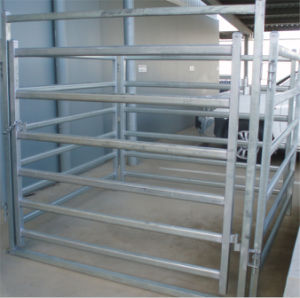 Used Cattle Horse Corral Livestock Panels/Horse Panel/ Cattle Panel/ Sheep Panel pictures & photos