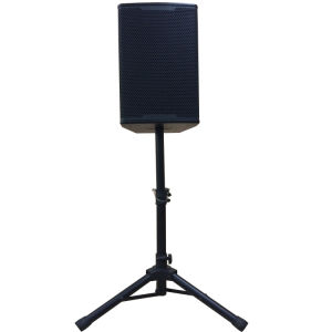 Public Address Professional Loundspeaker a-10 Series pictures & photos