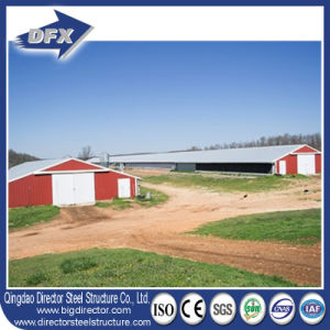 Cheap and Stable Steel Frame Chicken House pictures & photos