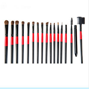 22PCS Animal Hair Professional Makeup Brush Set with Cosmetic Bag pictures & photos