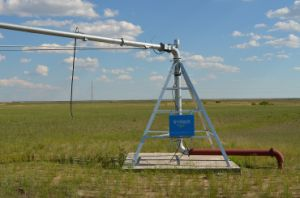 Agriculture Center Pivot Irrigation System pictures & photos