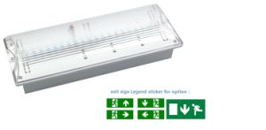 IP65 Flame Retardant ABS Maintained LED Emergency Light pictures & photos
