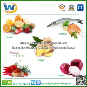 Fresh Vegetable Fruit Sea Food Fish Dryer Drying Machine pictures & photos