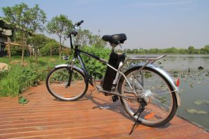 Electric Mountain Bicycle pictures & photos