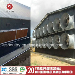 Poultry Equipment Galvanized H Type Cage for Chicken Farm with Cooling Pad Water Air Cooler pictures & photos