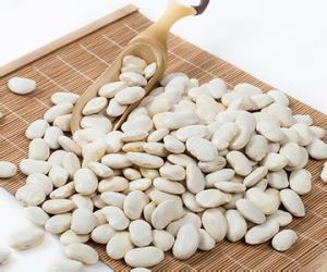 Natural White Kidney Bean Extract 100% pictures & photos