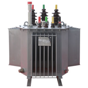 Power Transformer Manufacturer Oil or Dry Type pictures & photos