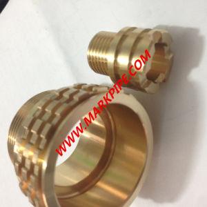 PPR Brass Insert pictures & photos