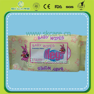 Baby Wet Wipe pictures & photos