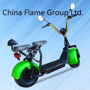 1000W Electric Scooter with F/R Suspension, 2 Seats pictures & photos