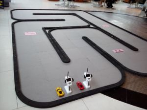Kyosho Mini-Z 24 Square Meters RC Car Race Track Manufacturer pictures & photos