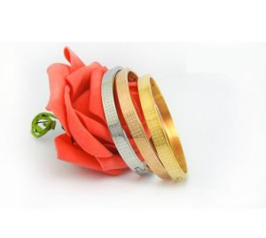 Couple Bangles Titanium Steel Jewelry 3 Color 2 Size pictures & photos
