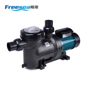 Anti Rust Color Customized Style Swimming Pool Water Filter Pump pictures & photos