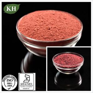 Top Quality Red Yeast Rice Powder in Bulk pictures & photos