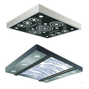 Decorative Etching Stainless Steel Elevator Ceiling Light Panel pictures & photos