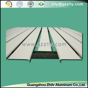 New Strip Ceiling for Building Decoration pictures & photos