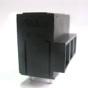 Screw Terminal Block with Dual Row Pins pictures & photos