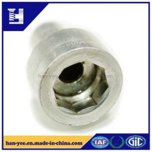 Custom Nickel Steel Octagon Grip Thumb Nut Fasteners pictures & photos