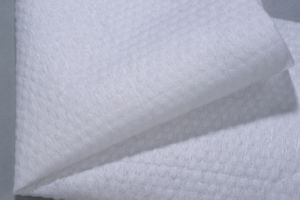Spunlace Nonwoven Fabric for Wipes pictures & photos