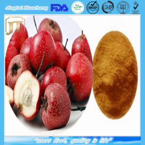 High Quality Water Soluble Hawthorn Berry Extract pictures & photos