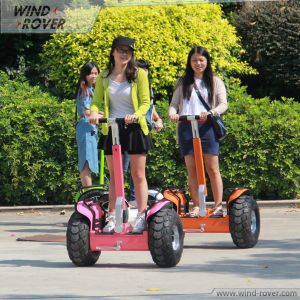 Wind Rover V5 Samsung Lithium Battery China Scooter for Kids pictures & photos