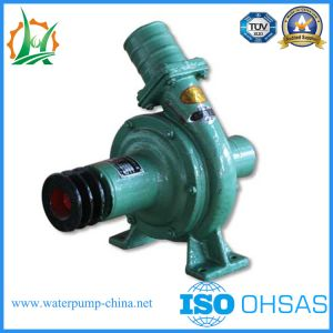 CB80-40 Inclined Type Agricultural Irrigation Centrifugal Pump pictures & photos