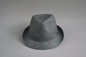 Black Blank Paper Straw Hat for Men pictures & photos