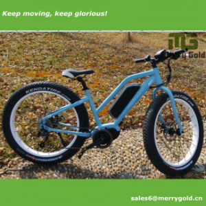2017 Hot Sell Fat Tire Electric Bicycle with MID Drive for Ladies pictures & photos