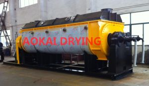 Hollow Paddle Sludge Drying Machine pictures & photos