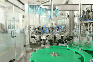 Beer 3-in-1 Filling and Capping Equipment Plant for Glass Bottle pictures & photos