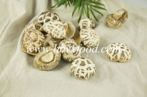 Edible Vegetable Mushroom 4-5cm Dried White Flower Mushrooms pictures & photos
