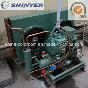 5-12HP Air-Cooled Condensing Units with Semi-Hermetic Bitzer Compressors Low Temperature pictures & photos