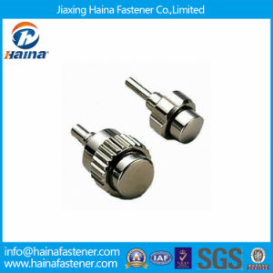 Stainless Steel Watches Pusher Screw (micro screw) pictures & photos