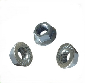 Serrated Flange Head Nuts pictures & photos