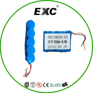 18650 Battery Pack 5s 18.5V Lipo Battery 2600mAh pictures & photos