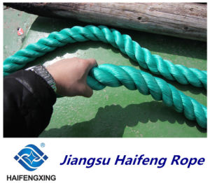 3\4-Strand Fiber Ropes Polyester Rope Polypropylene Rope Mooring Rope pictures & photos