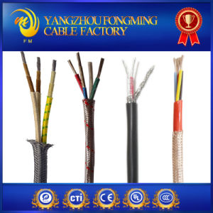 300V Flat Type Electric Wires pictures & photos