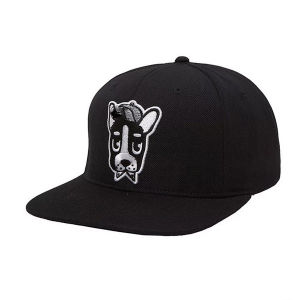 New Design Custom Embroidery Yupoong Snapback Cap pictures & photos