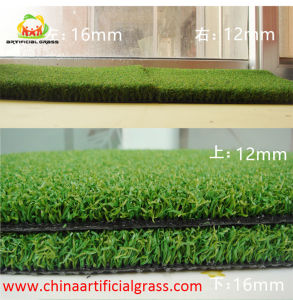 16mm Pile Height 2 Color Natural Green Golf Putting Green Lawn pictures & photos
