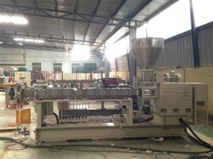High Qulaity Twin Screw Extruder for Plastic pictures & photos
